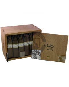 Nub Cameroon 466BPT Box 24
