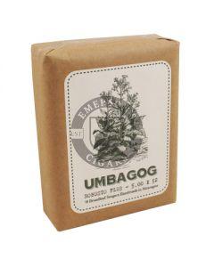 Umbagog Robusto Plus Bundle 10